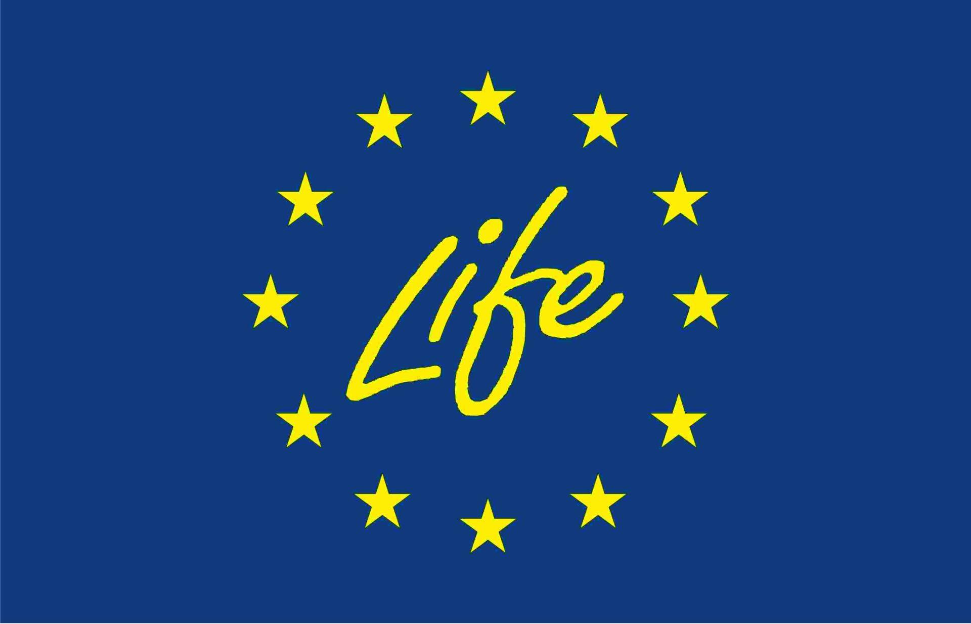 EU Förderung: